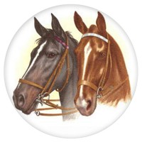Ceramic Tile Horses Head [A]