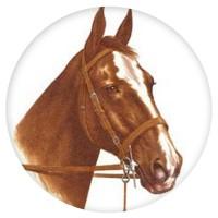 Ceramic Tile Horses Head [D]