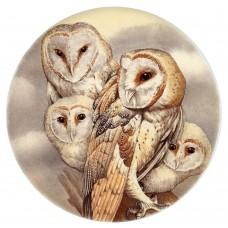 Ceramic Tile Barn Owl