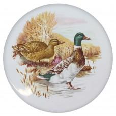 Ceramic Tile Duck
