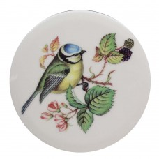 Blue Tit Coaster Tile