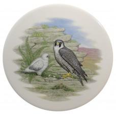Ceramic Tile Falcon